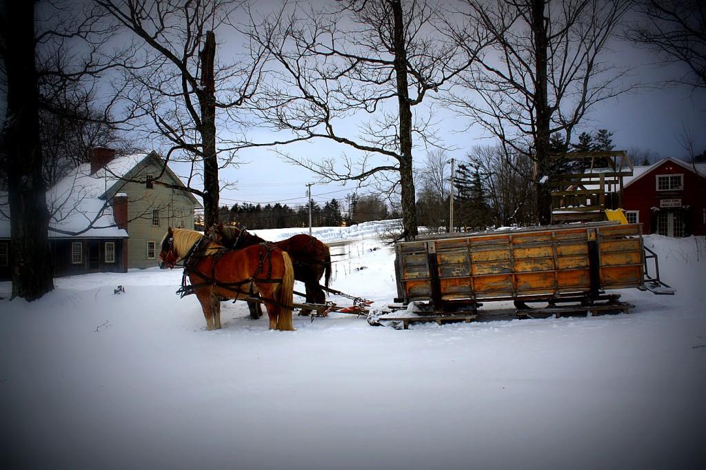 sleigh ride 2